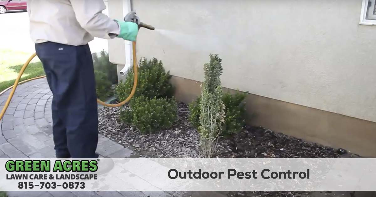 Outdoor and perimeter pest control services in Illinois